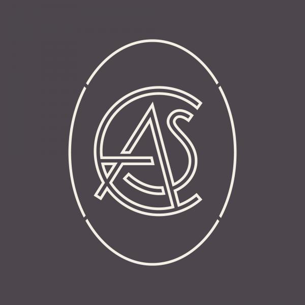 http://drewheffron.com/files/gimgs/th-159_The-Castle-Branding-Logo-Mark.png